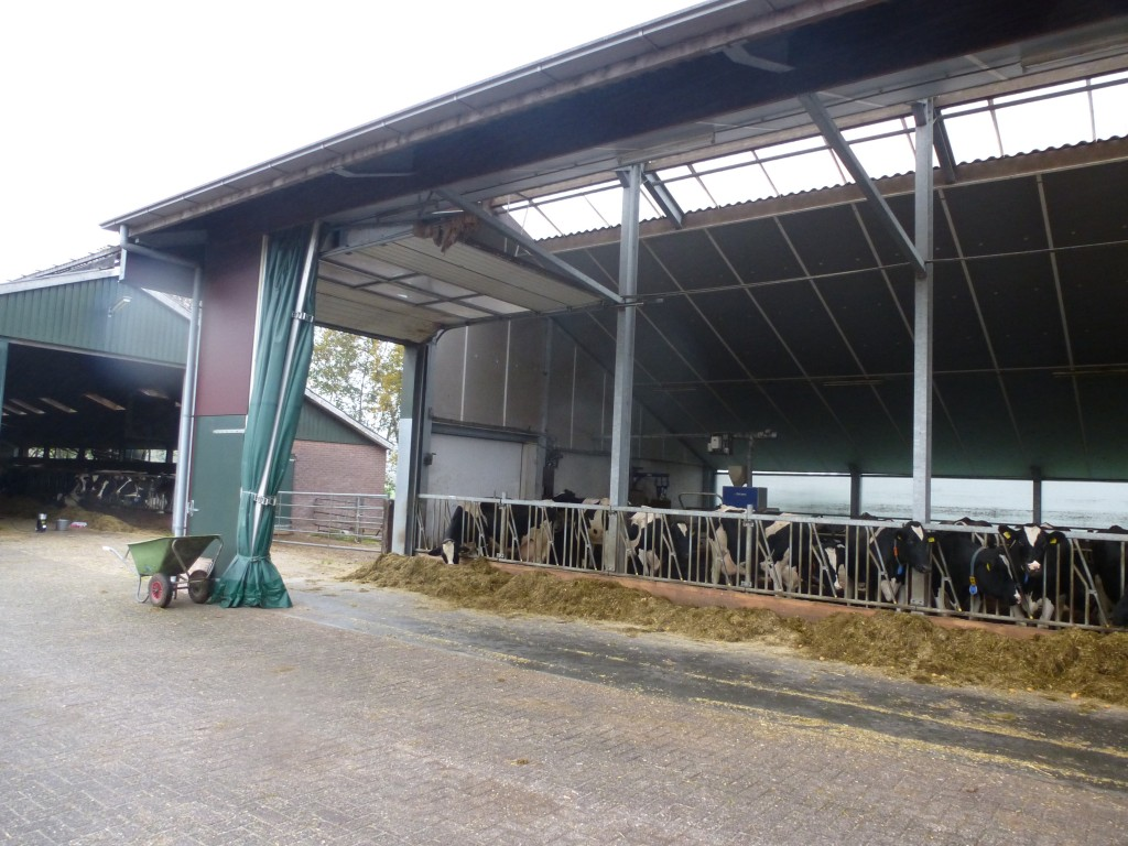 Recent trip to Netherlands , highlights there are other options on Cow buildings